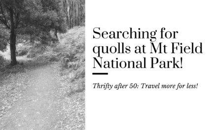 Searching for Quolls in Mt Field National Park