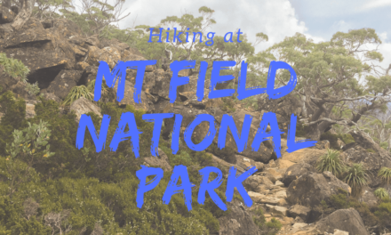 Hiking Mount Field National Park