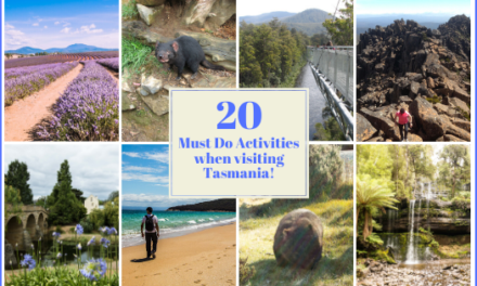 20+ Must Do Activities in Tasmania