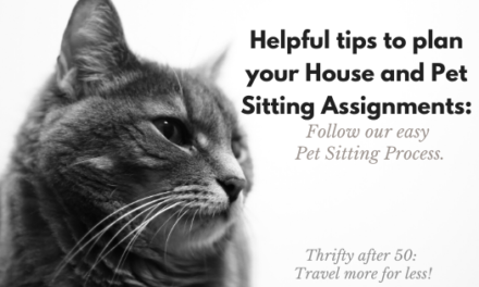 Helpful tips to plan your House and Pet Sitting Jobs: Follow our easy Pet Sitting Process