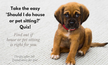 "Take the easy ""Should I do house or pet sitting?"" quiz!"
