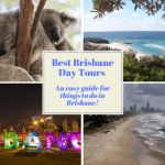 Best Brisbane Day Tours: An easy guide for things to do in Brisbane